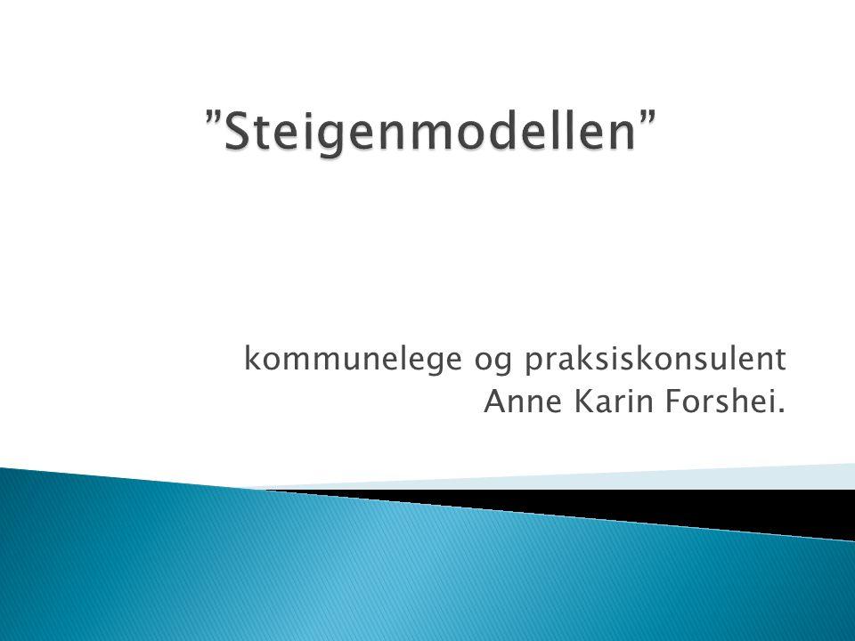 kommunelege og praksiskonsulent Anne Karin Forshei.
