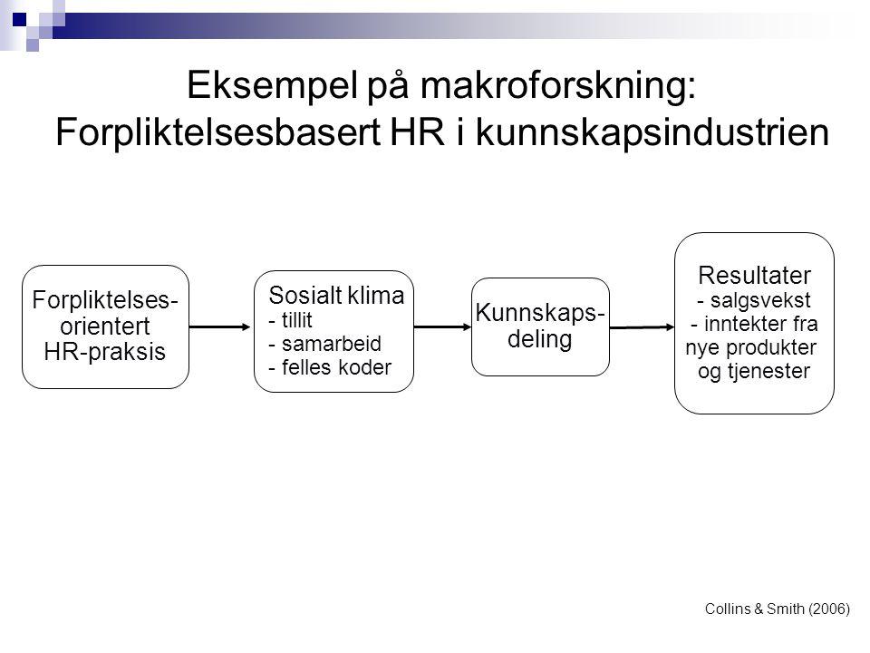 Eksempel på makroforskning: Forpliktelsesbasert HR i kunnskapsindustrien