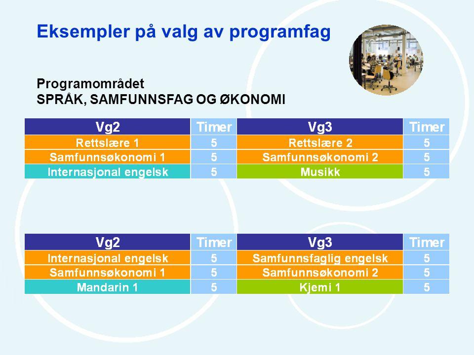 Eksempler på valg av programfag