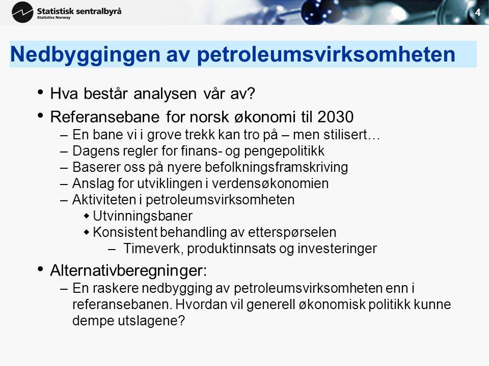 Nedbyggingen av petroleumsvirksomheten