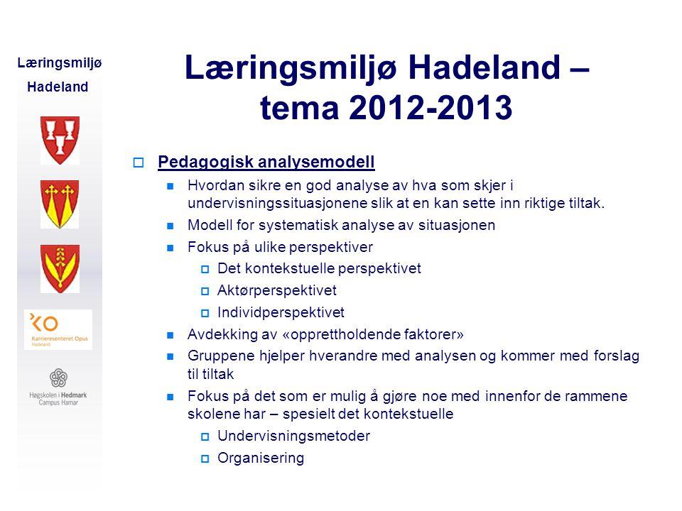 Læringsmiljø Hadeland – tema 2012-2013