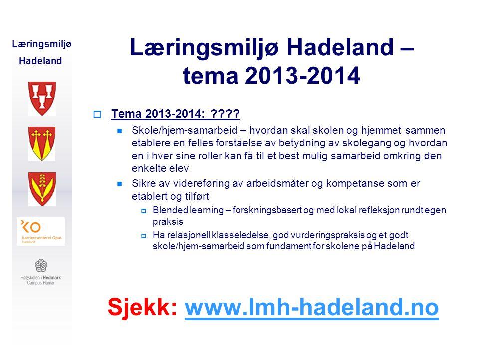 Læringsmiljø Hadeland – tema 2013-2014