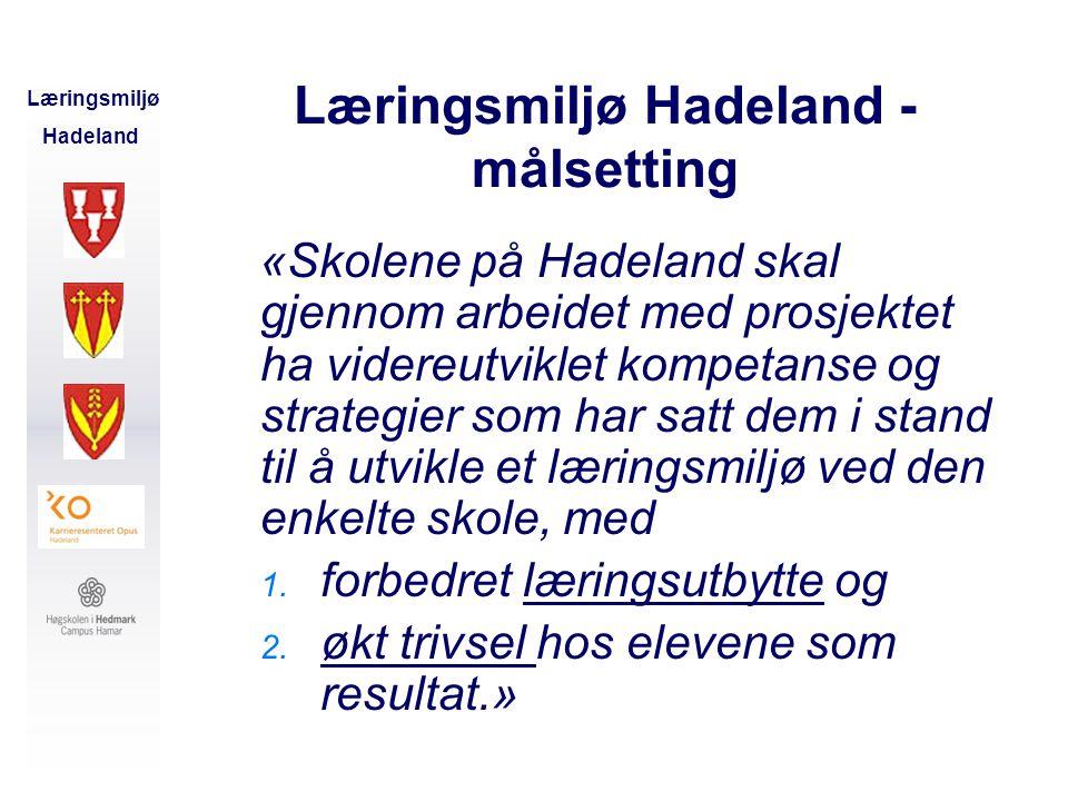 Læringsmiljø Hadeland - målsetting
