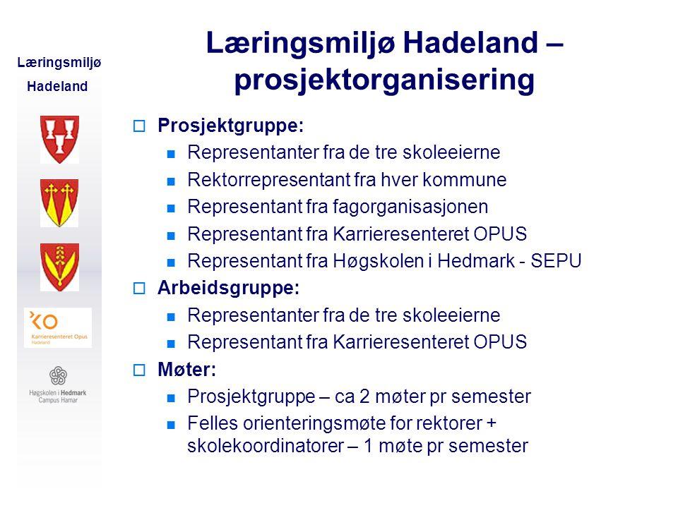 Læringsmiljø Hadeland – prosjektorganisering