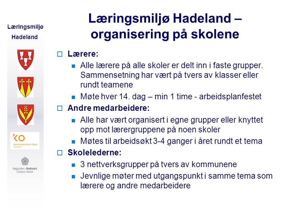 Læringsmiljø Hadeland – organisering på skolene