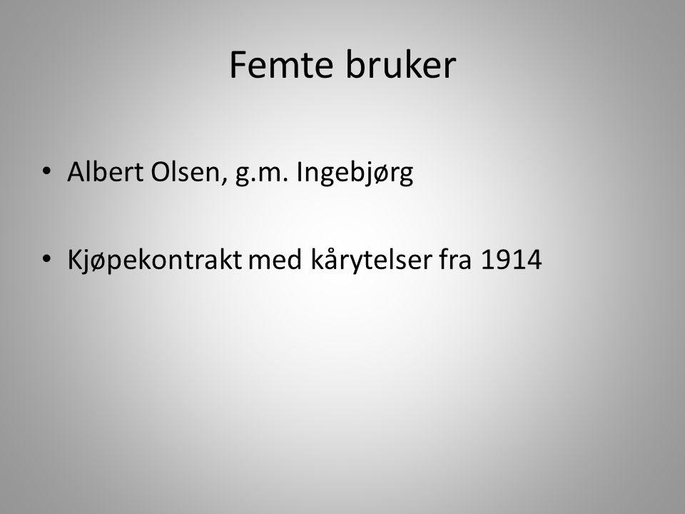 Femte bruker Albert Olsen, g.m. Ingebjørg