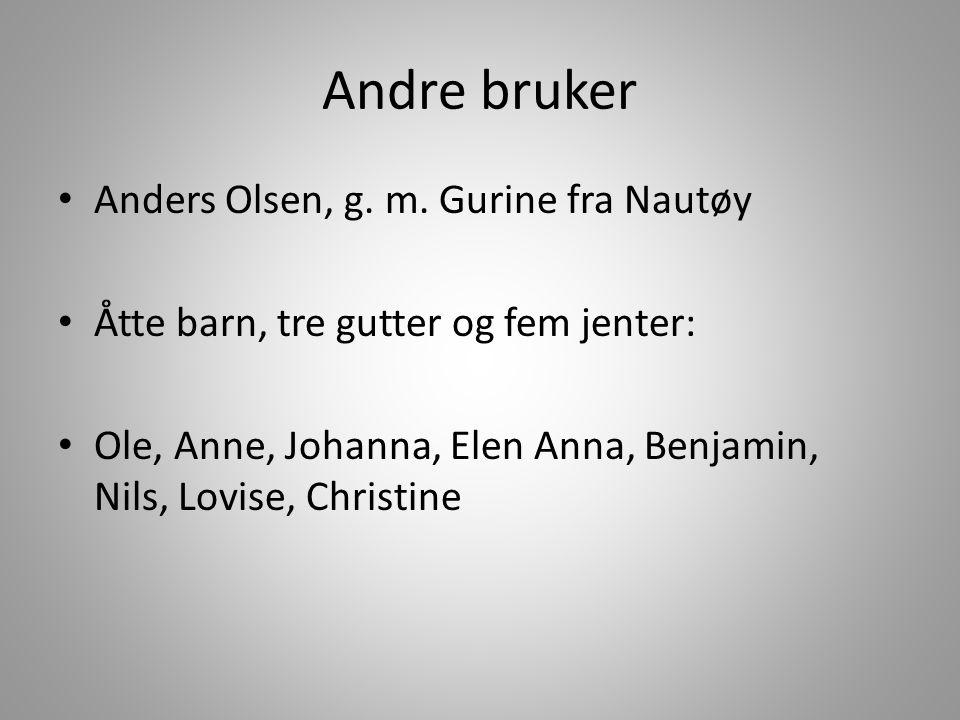Andre bruker Anders Olsen, g. m. Gurine fra Nautøy