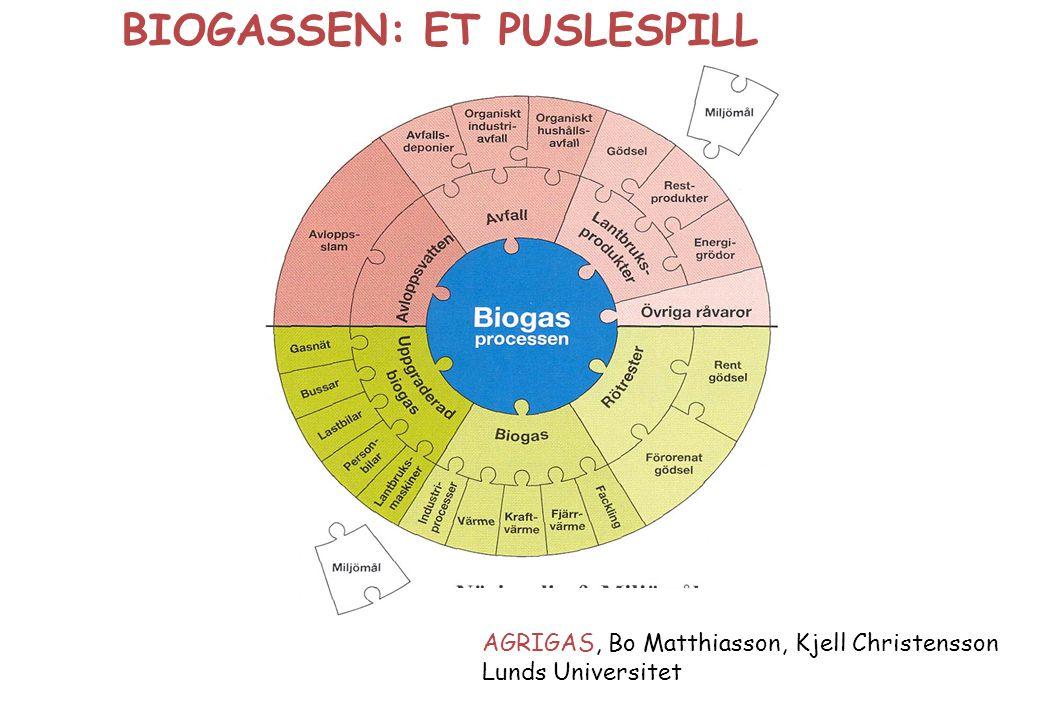 BIOGASSEN: ET PUSLESPILL