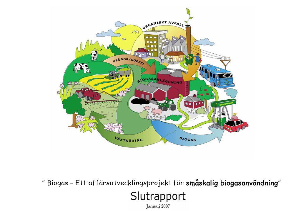 Biogas – Ett affärsutvecklingsprojekt för småskalig biogasanvändning