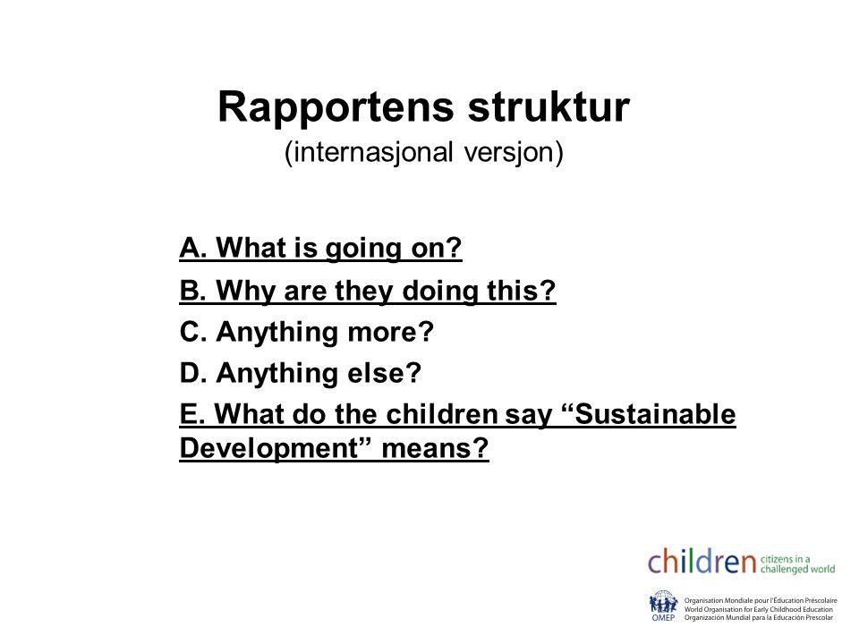 Rapportens struktur (internasjonal versjon)