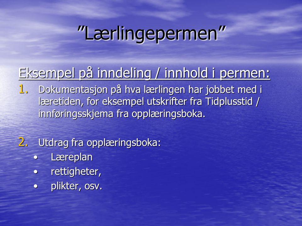 Lærlingepermen Eksempel på inndeling / innhold i permen: