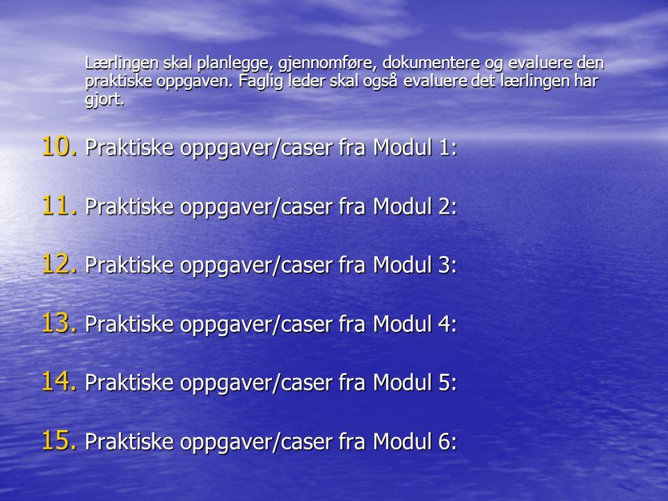 Praktiske oppgaver/caser fra Modul 1: