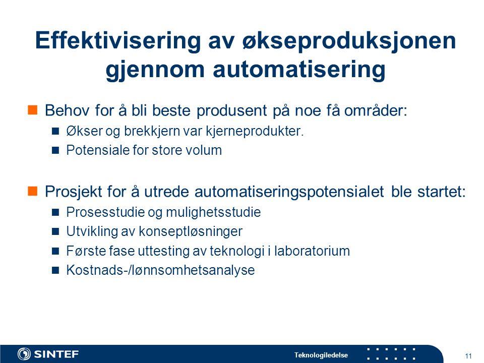 Effektivisering av økseproduksjonen gjennom automatisering