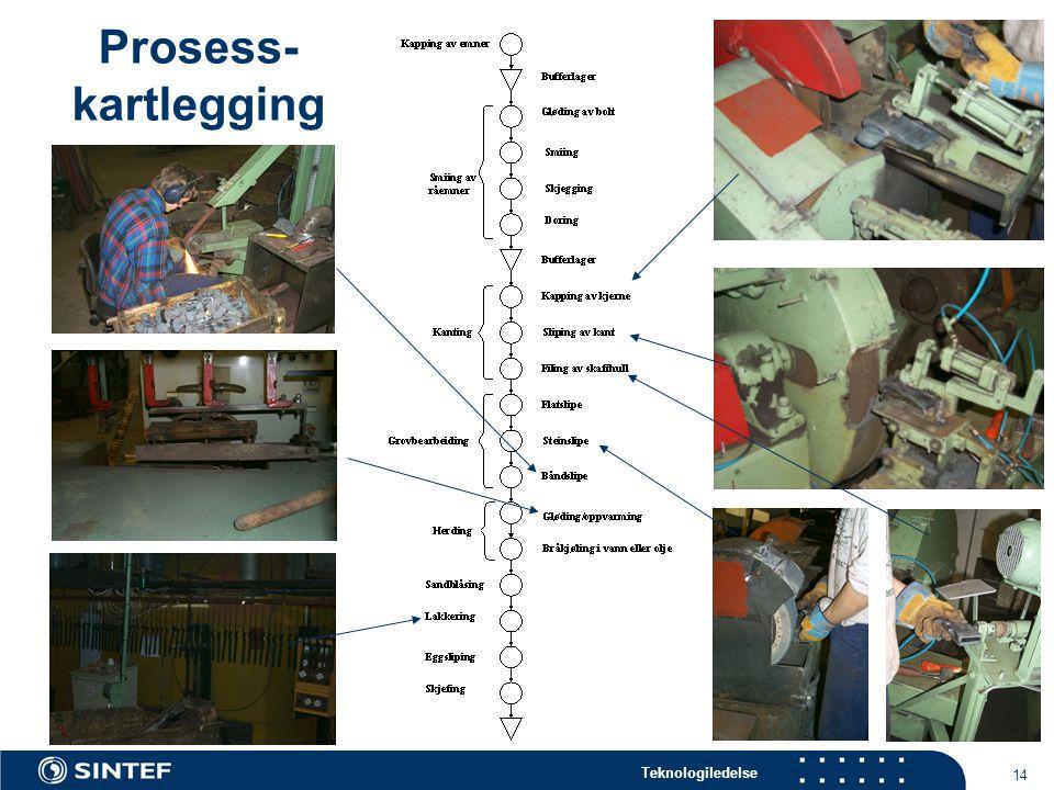 Prosess- kartlegging