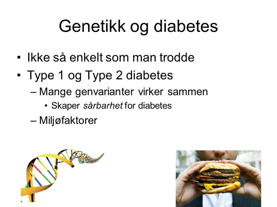 Genetikk og diabetes Ikke så enkelt som man trodde