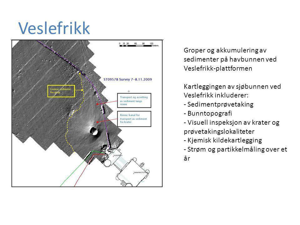 Veslefrikk Groper og akkumulering av sedimenter på havbunnen ved Veslefrikk-plattformen. Kartleggingen av sjøbunnen ved Veslefrikk inkluderer: