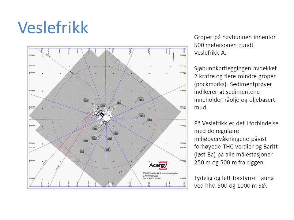 Veslefrikk Groper på havbunnen innenfor 500 metersonen rundt Veslefrikk A.