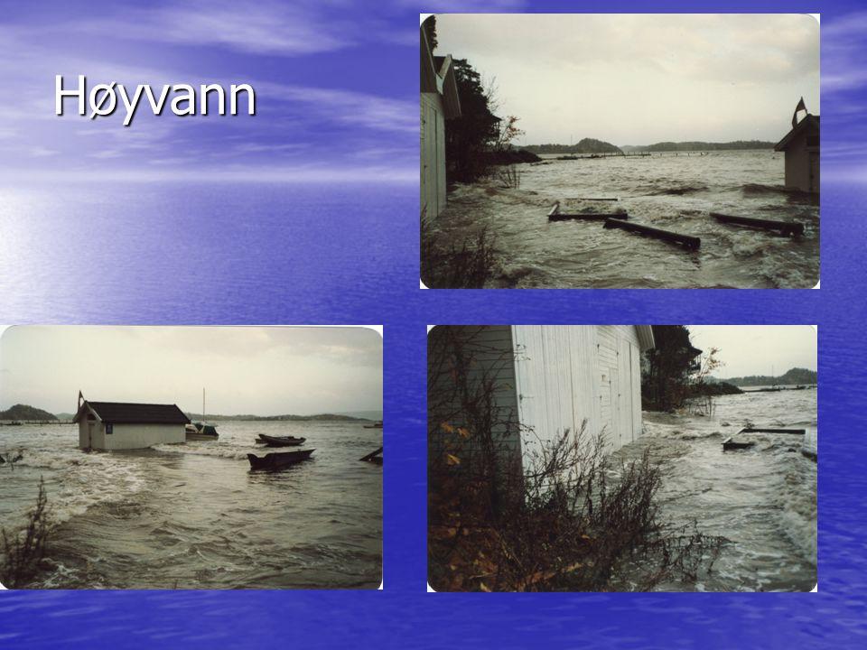 Høyvann
