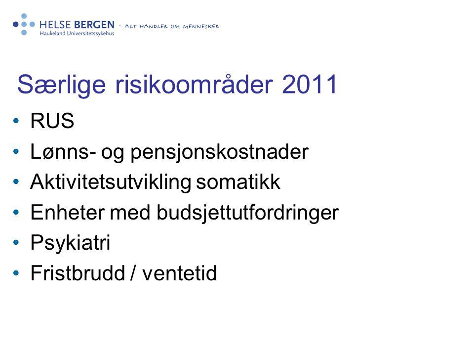 Særlige risikoområder 2011
