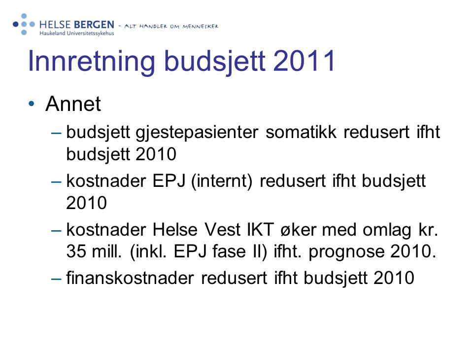 Innretning budsjett 2011 Annet