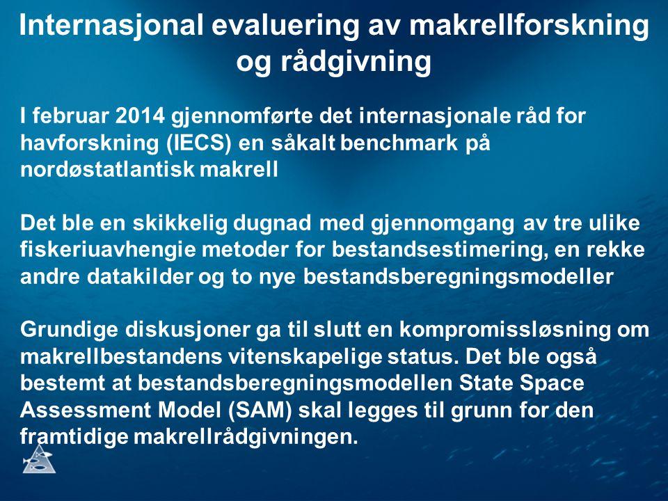 Internasjonal evaluering av makrellforskning og rådgivning