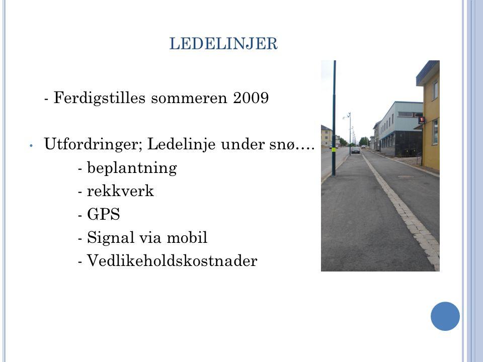 ledelinjer - Ferdigstilles sommeren 2009
