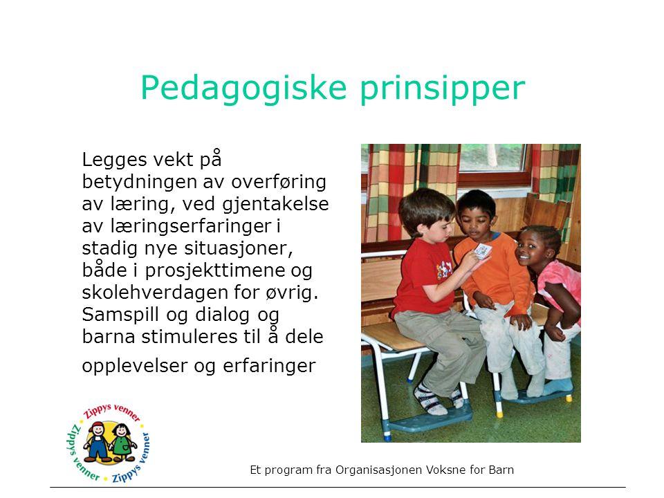 Pedagogiske prinsipper