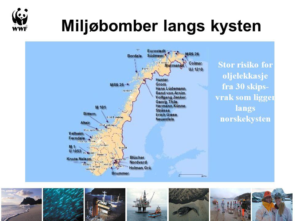 Miljøbomber langs kysten