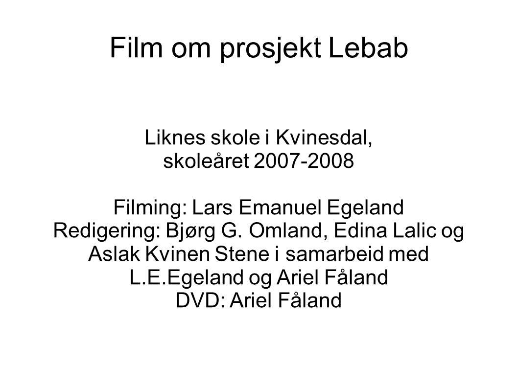 Film om prosjekt Lebab Liknes skole i Kvinesdal, skoleåret 2007-2008