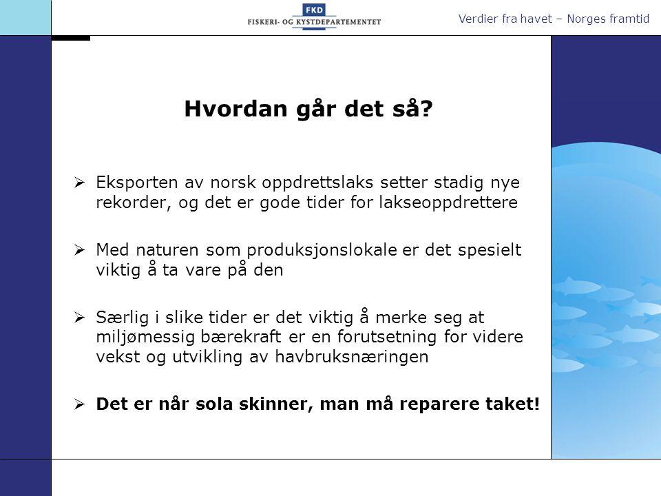 Hvordan går det så Eksporten av norsk oppdrettslaks setter stadig nye rekorder, og det er gode tider for lakseoppdrettere.
