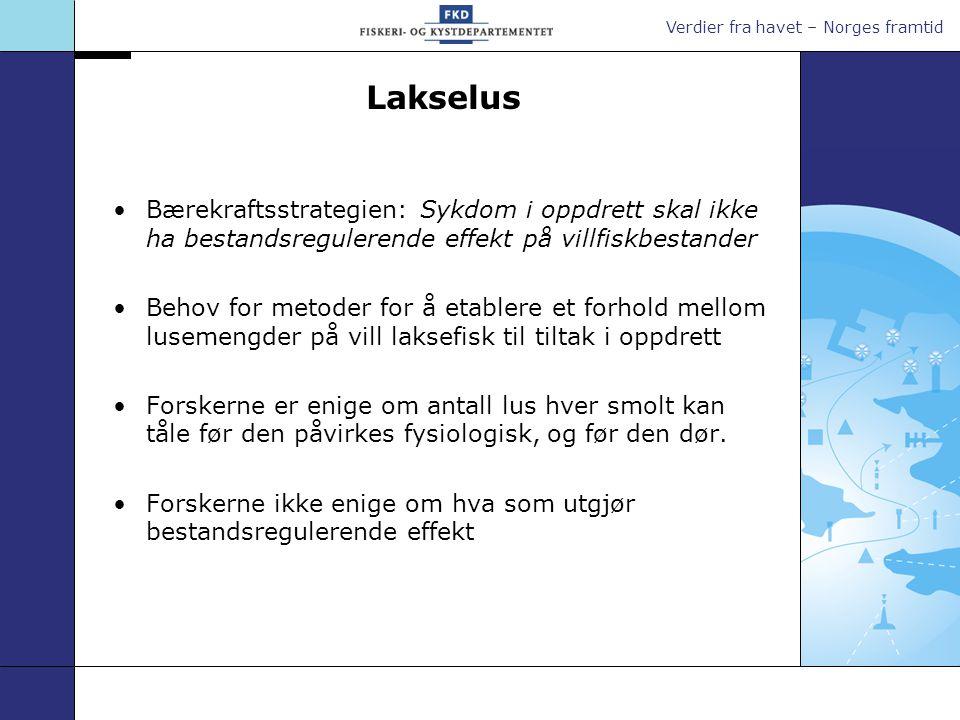 Lakselus Bærekraftsstrategien: Sykdom i oppdrett skal ikke ha bestandsregulerende effekt på villfiskbestander.