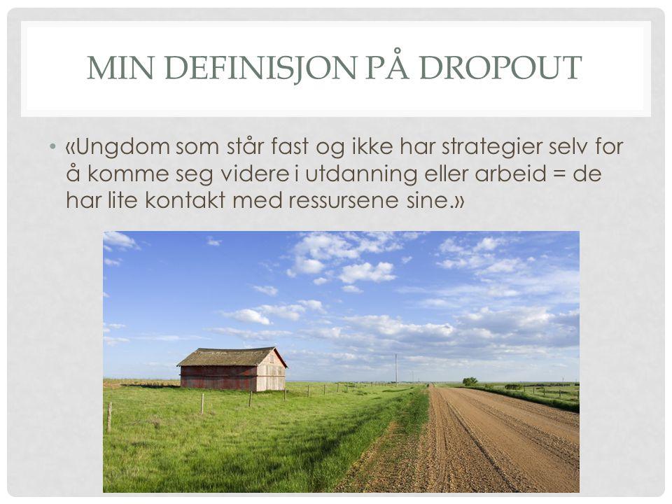 Min definisjon på Dropout