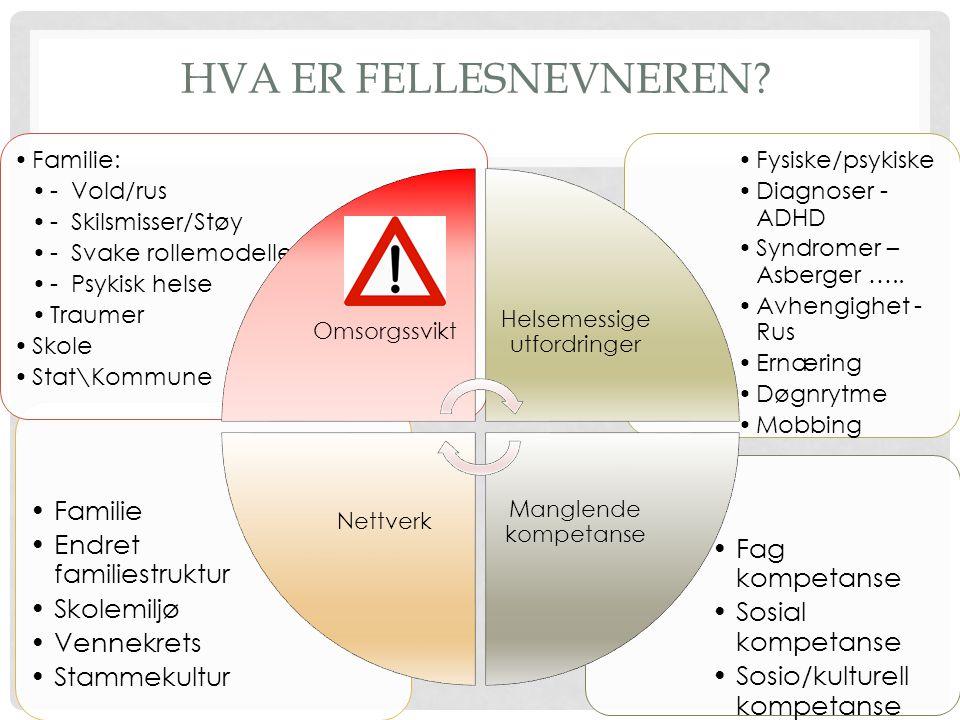 Helsemessige utfordringer