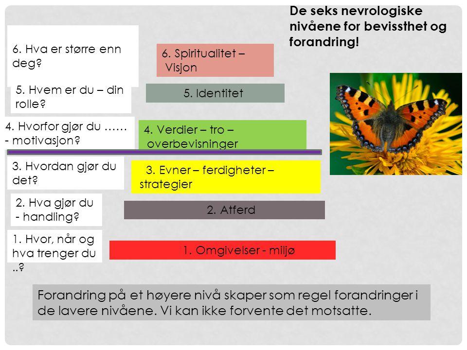 De seks nevrologiske nivåene for bevissthet og forandring!