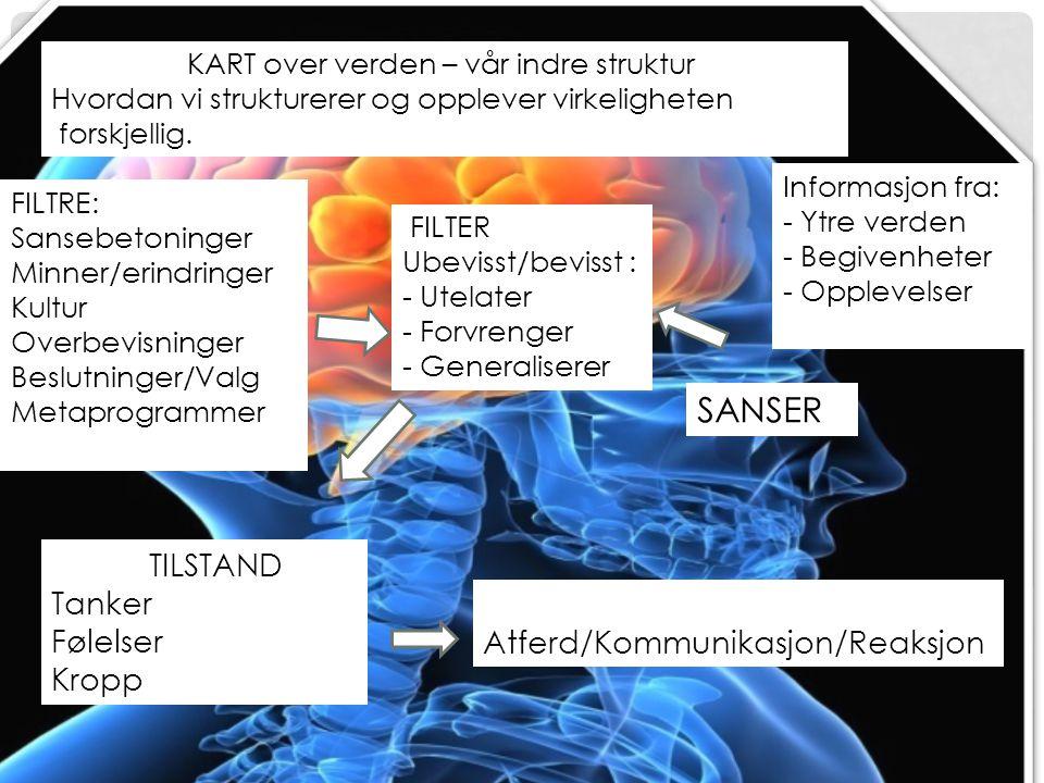 SANSER TILSTAND Tanker Følelser Atferd/Kommunikasjon/Reaksjon Kropp
