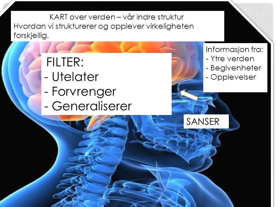 - Utelater - Forvrenger - Generaliserer SANSER