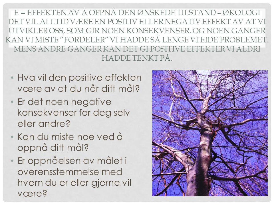 Hva vil den positive effekten være av at du når ditt mål