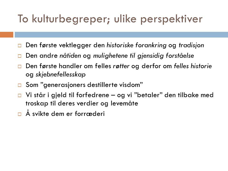 To kulturbegreper; ulike perspektiver