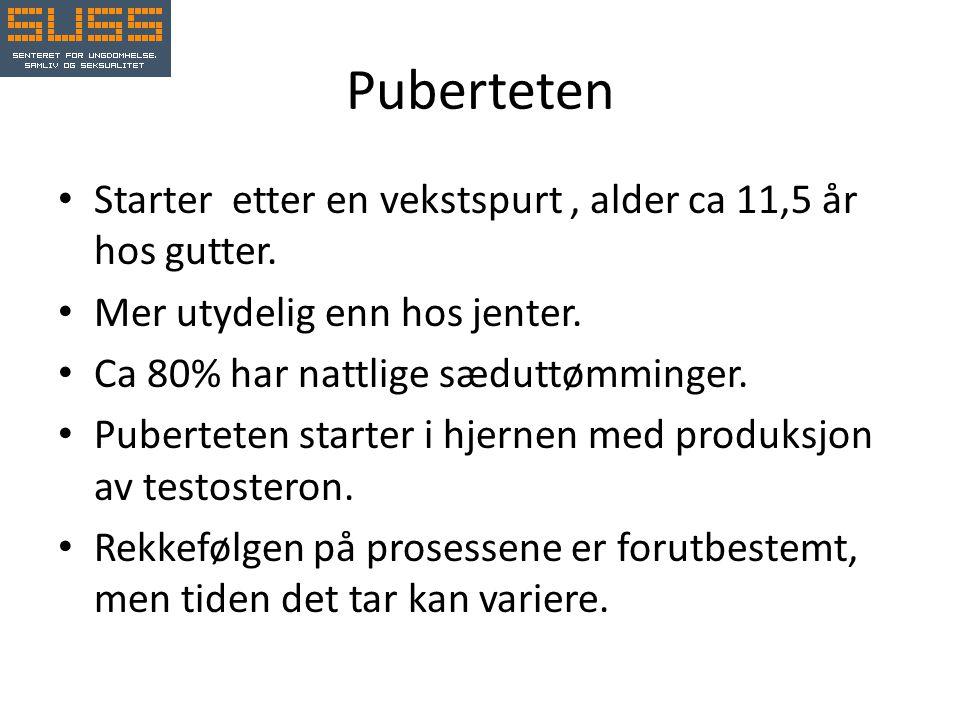 Puberteten Starter etter en vekstspurt , alder ca 11,5 år hos gutter.