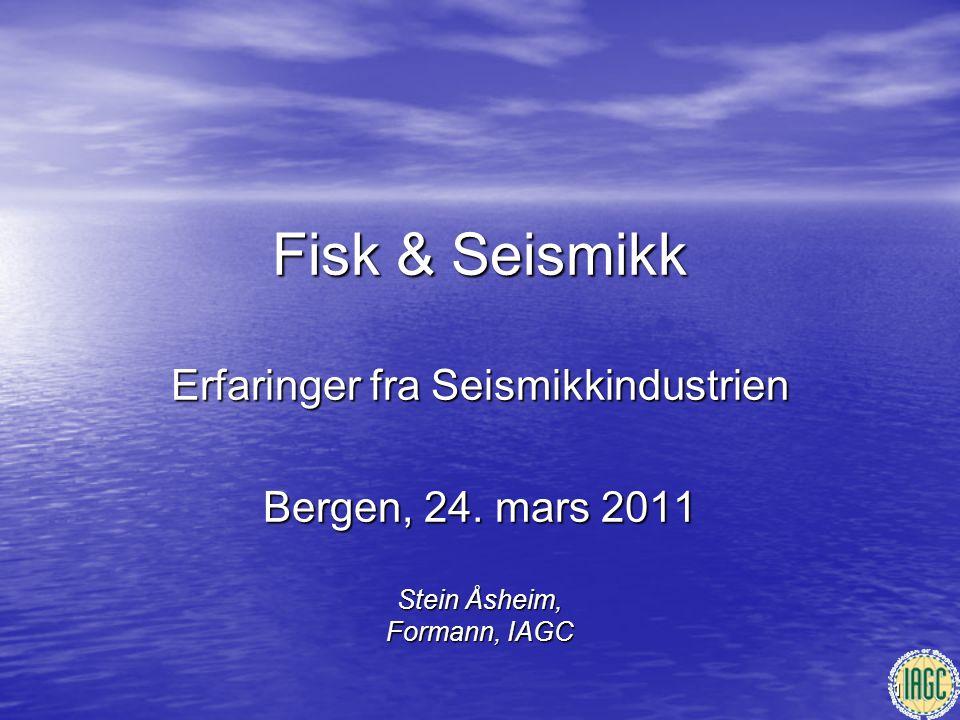 Stein Åsheim, Formann, IAGC