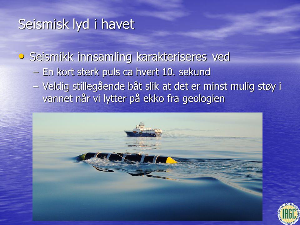 Seismisk lyd i havet Seismikk innsamling karakteriseres ved