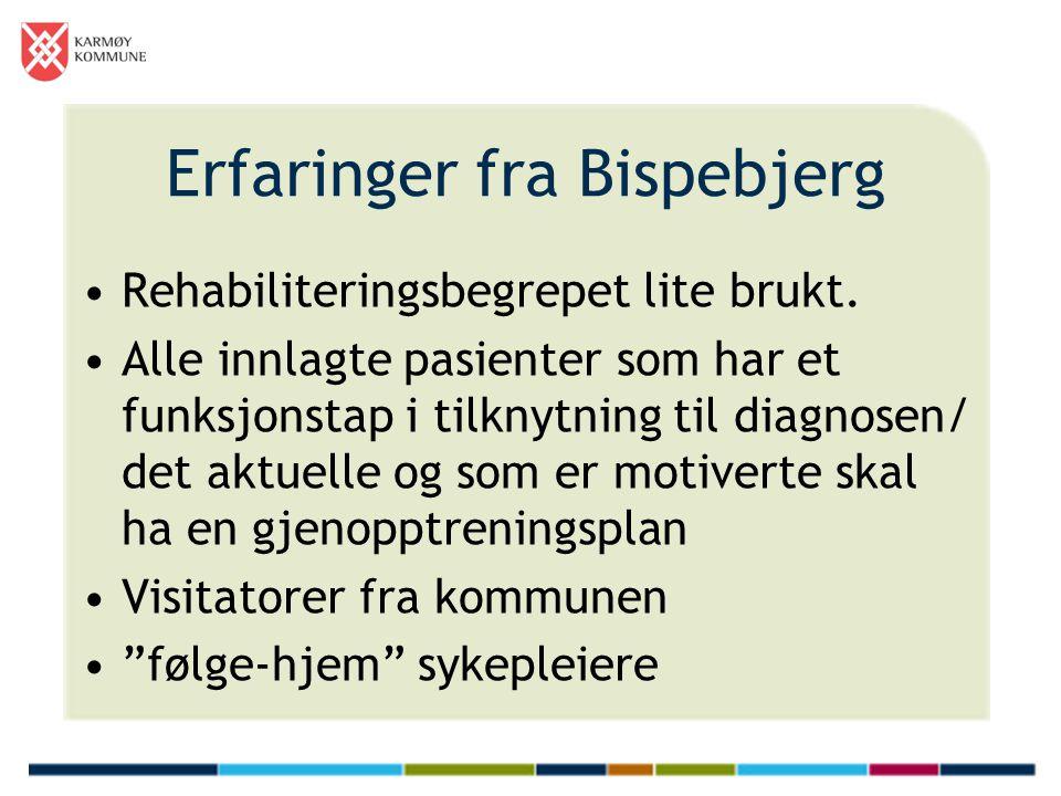 Erfaringer fra Bispebjerg