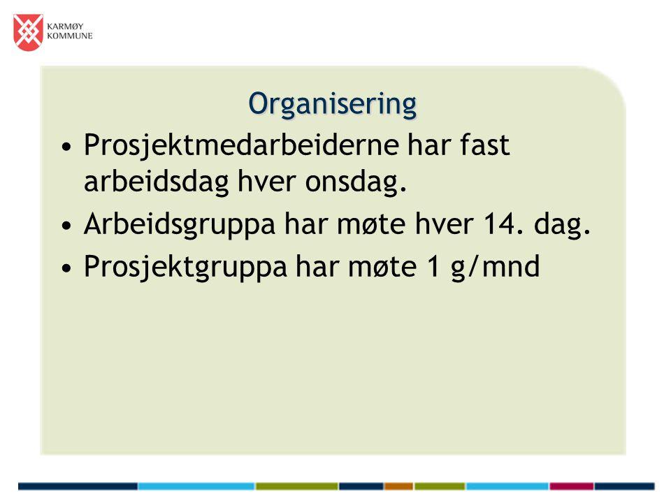 Organisering Prosjektmedarbeiderne har fast arbeidsdag hver onsdag. Arbeidsgruppa har møte hver 14. dag.