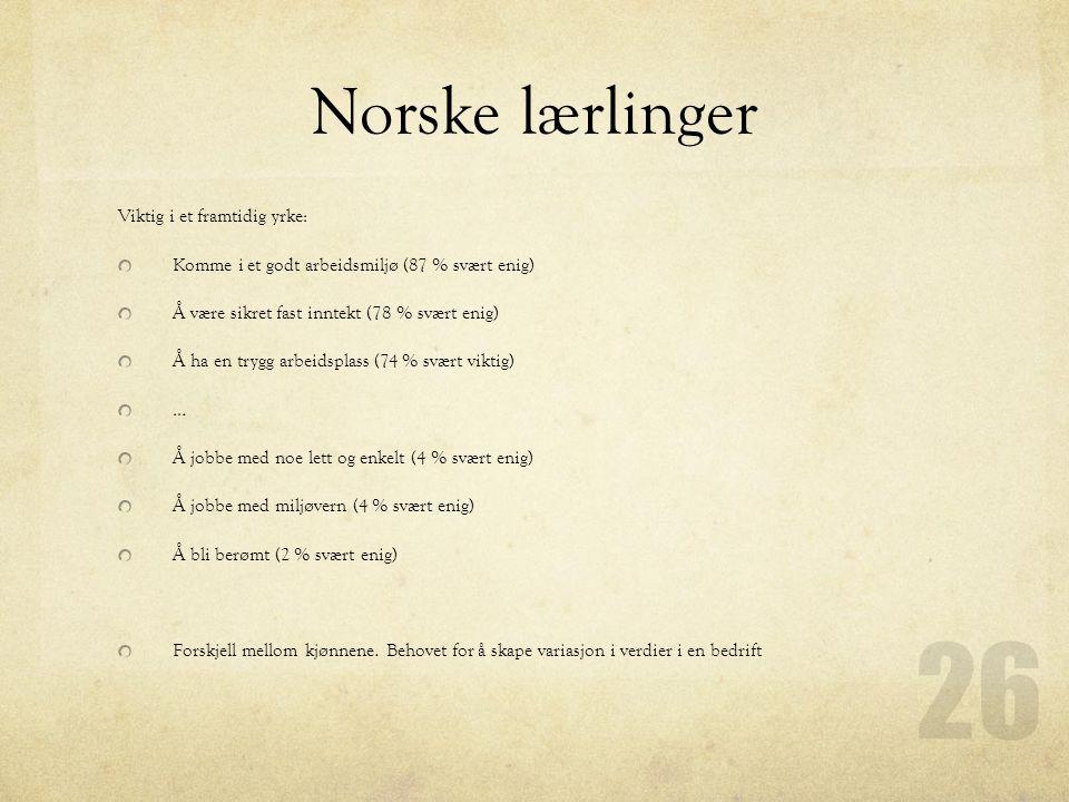 Norske lærlinger Viktig i et framtidig yrke: