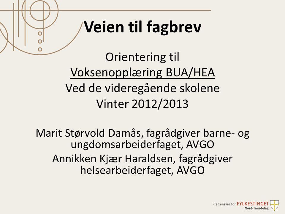Veien til fagbrev Orientering til Voksenopplæring BUA/HEA