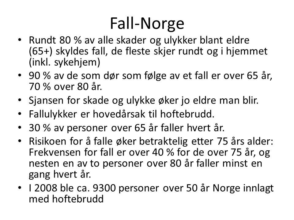 Fall-Norge Rundt 80 % av alle skader og ulykker blant eldre (65+) skyldes fall, de fleste skjer rundt og i hjemmet (inkl. sykehjem)