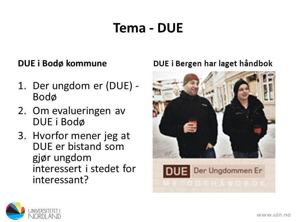 Tema - DUE Der ungdom er (DUE) - Bodø Om evalueringen av DUE i Bodø