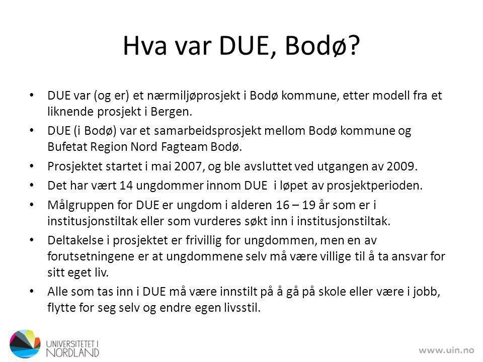 Hva var DUE, Bodø DUE var (og er) et nærmiljøprosjekt i Bodø kommune, etter modell fra et liknende prosjekt i Bergen.
