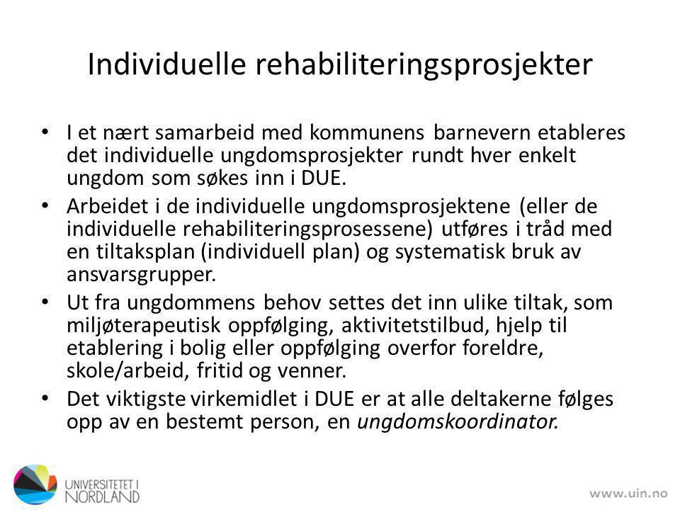 Individuelle rehabiliteringsprosjekter