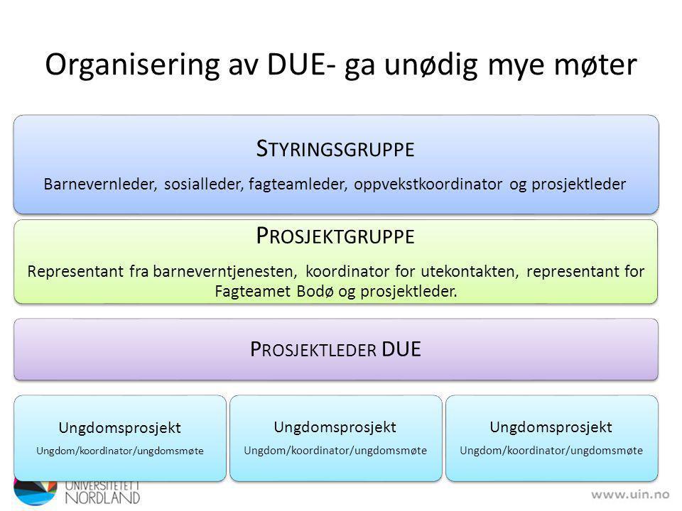 Organisering av DUE- ga unødig mye møter